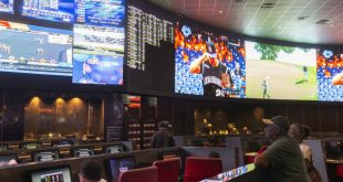 The Sportsbook that is Headed to a Big Share of the Market
